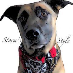 Storm's Style